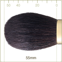 GSN-1:Powder brush
